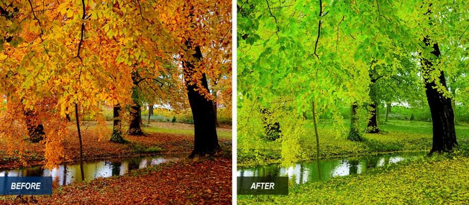 I'm offering this lightroom preset for free. It gives your autumn photo a spring theme.