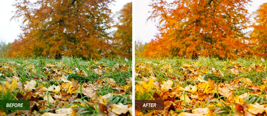I'm offering this lightroom preset for free. I designed this to make the autumn color stand out more and also bring more light into a picture.