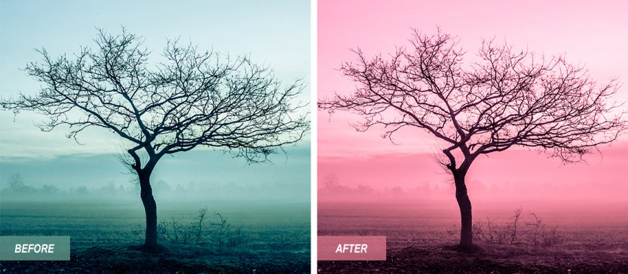 I'm offering this lightroom preset for free. It gives your photo a pink tone.