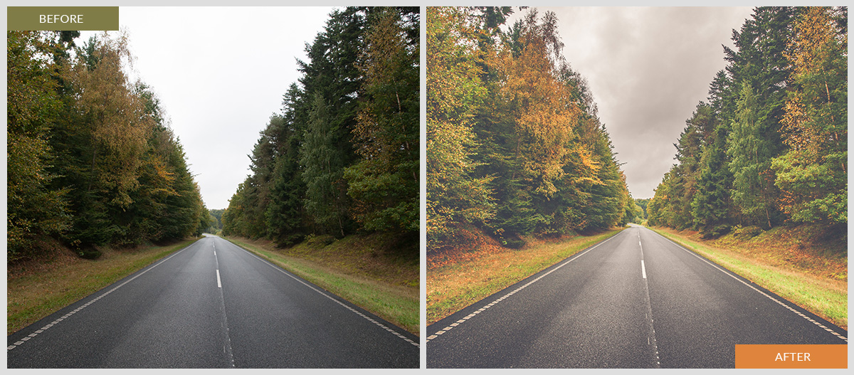autumn road lightroom preset for free
